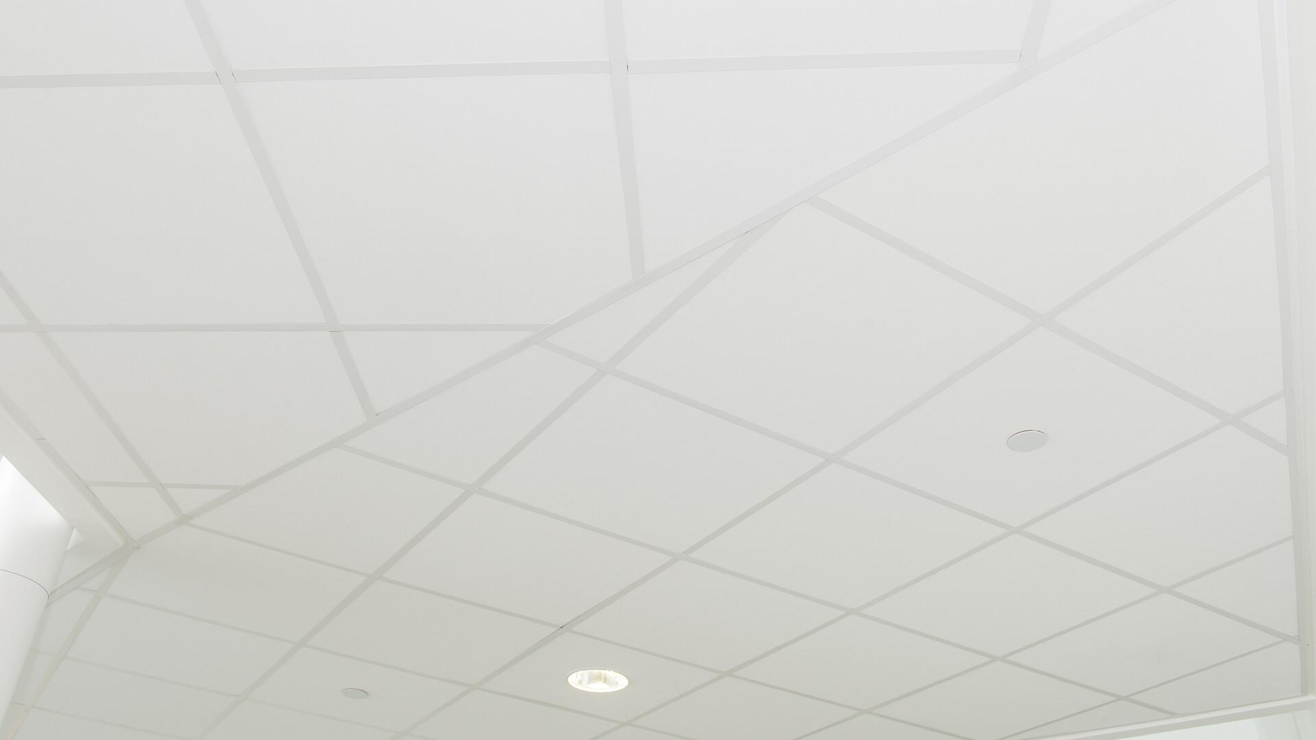 Produkter på bildet: Rockfon® Tropic™, 600 x 600
