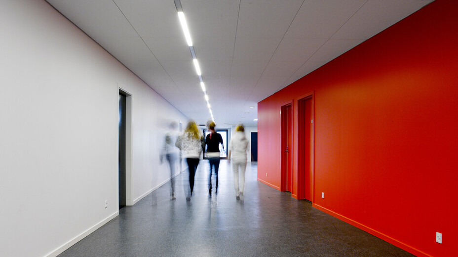 DK Rungsted Private Realskole, Fusion, education school